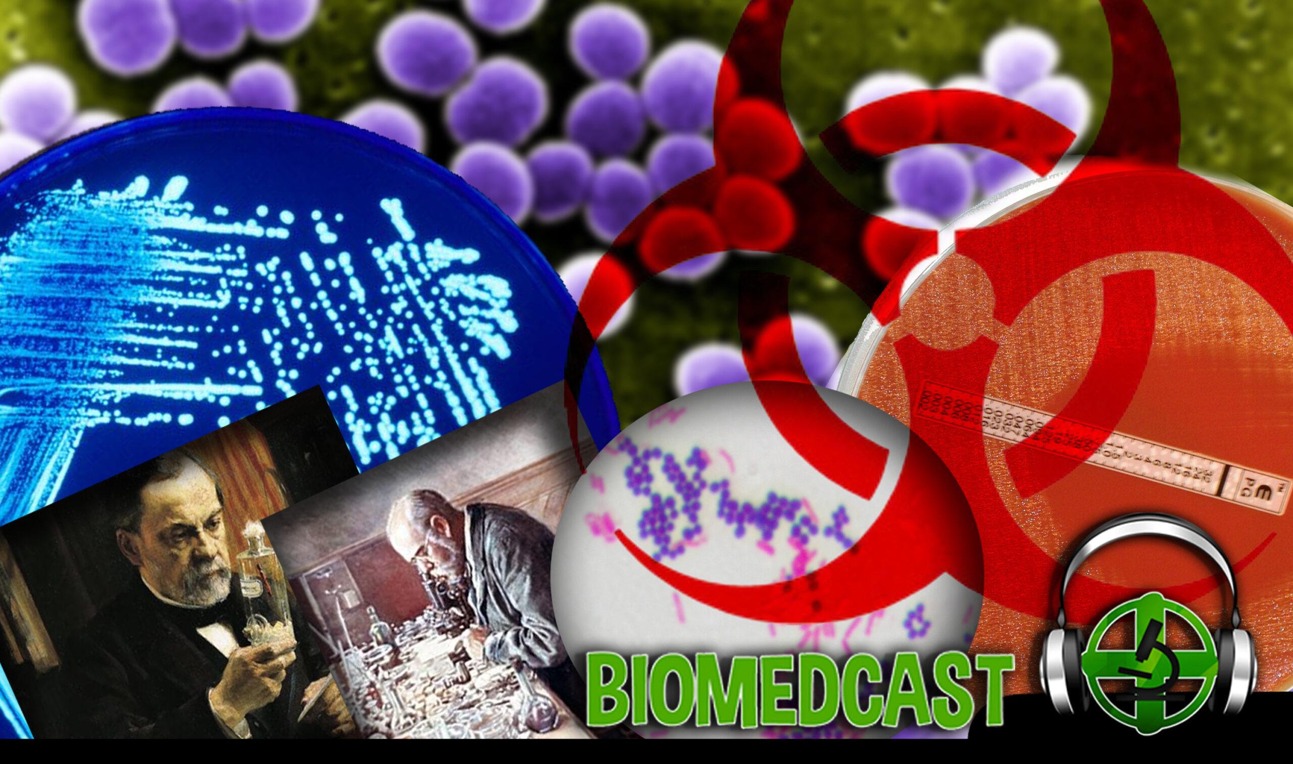 #23 O Universo Microscópico: Bactérias