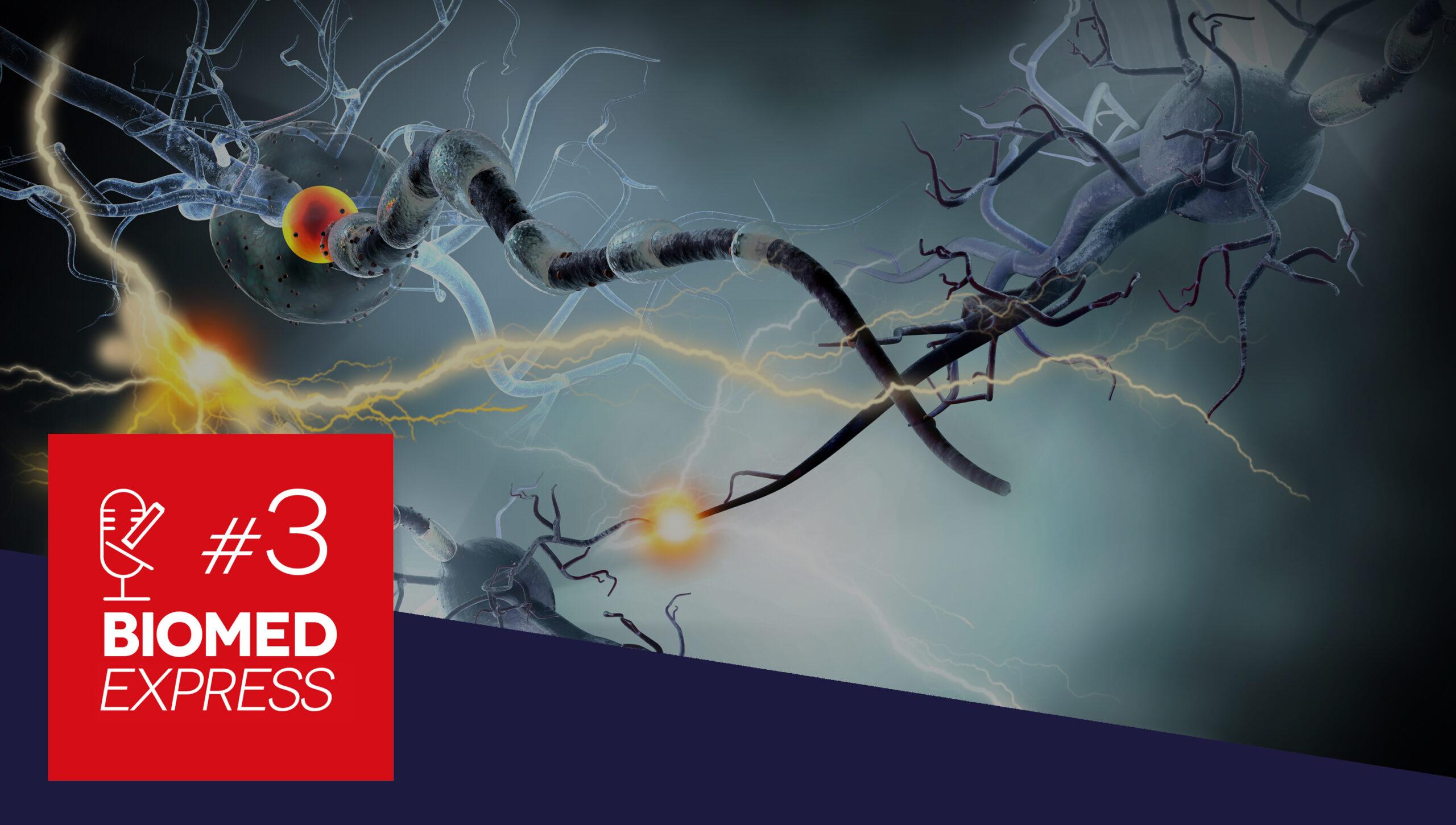 #3 Biomed Express – Descoberto Gene envolvido com a Esclerose Múltipla