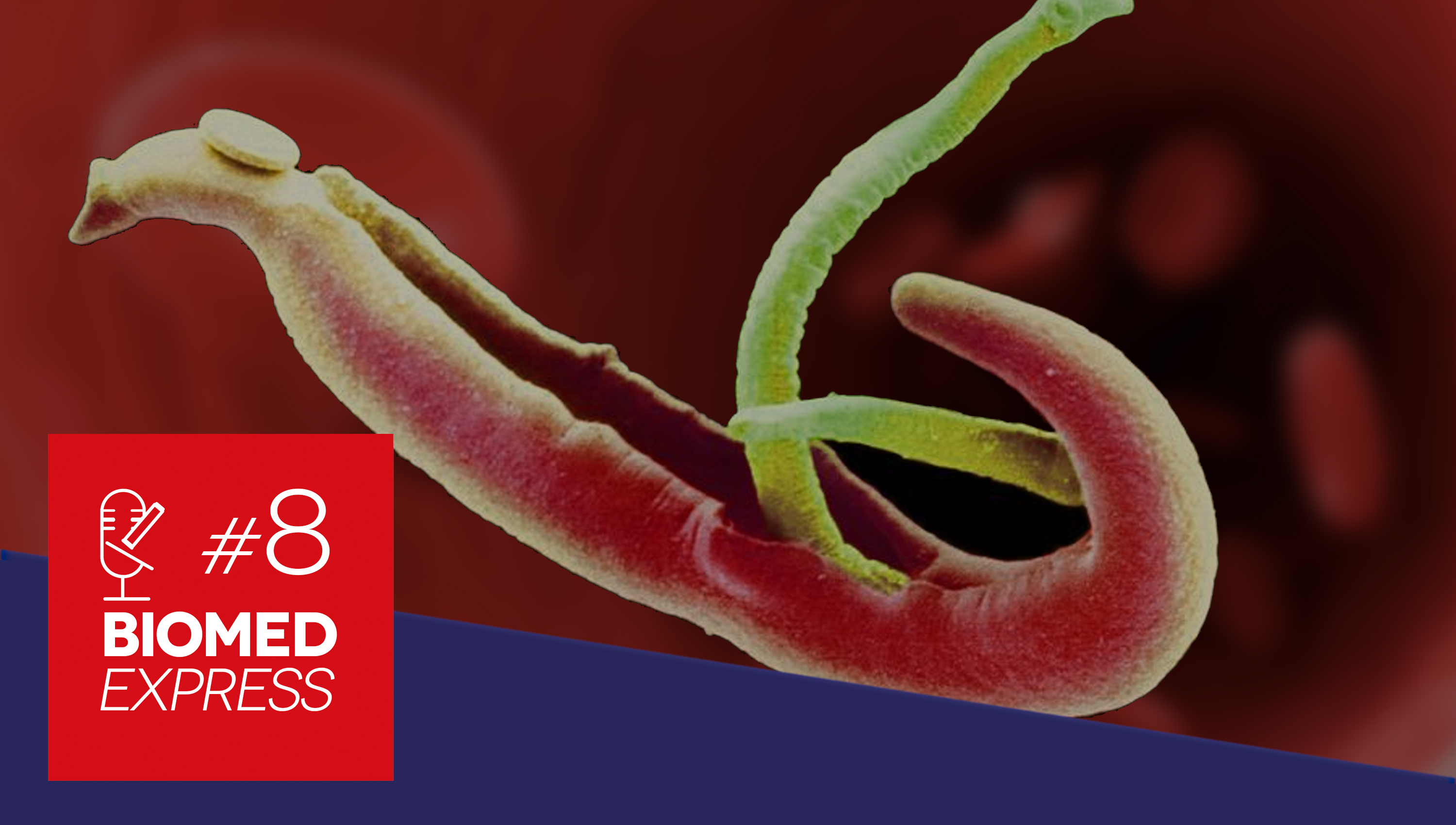 #8 Biomed Express – Vacina Brasileira para Prevenção da Esquistossomose